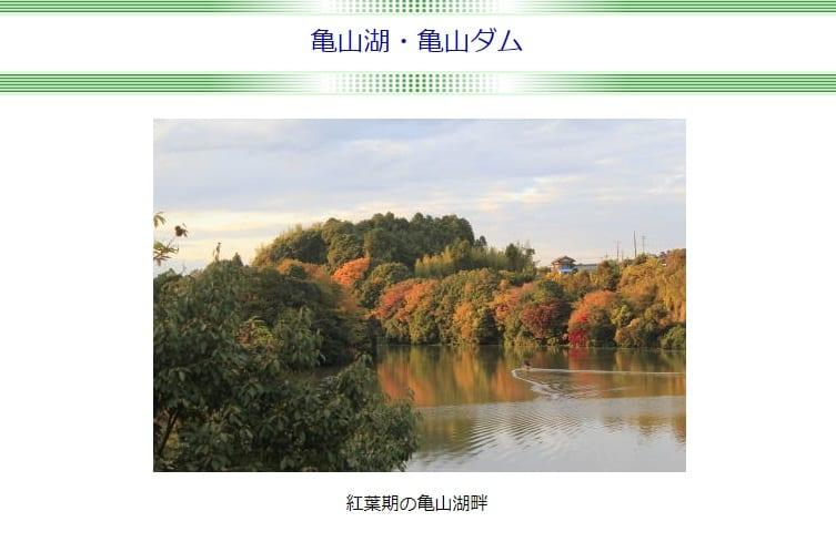 【関東・紅葉デート♡】都内から日帰りで紅葉を楽しむ♡秋のドライブおすすめ8選【穴場】