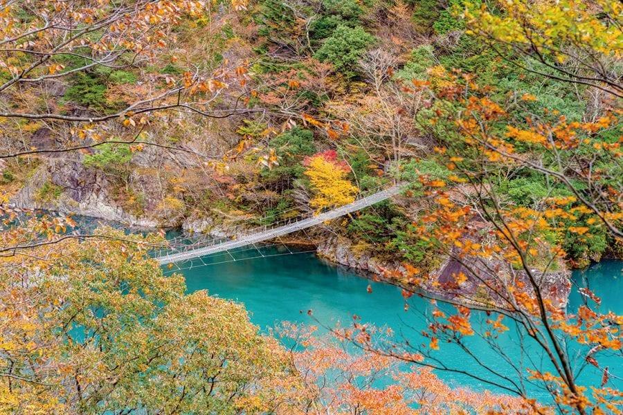 【東京から日帰り】いま大井川がアツい!夢のつり橋に、湖に浮かぶ駅!?富士山の絶景も!