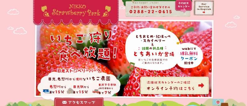 【関東日帰り】栃木県のいちご狩りおすすめ8選!新品種「とちあいか」&時間無制限も