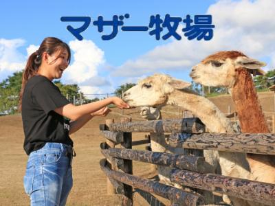 千葉県「マザー牧場」に日本初のグランピング施設が誕生!