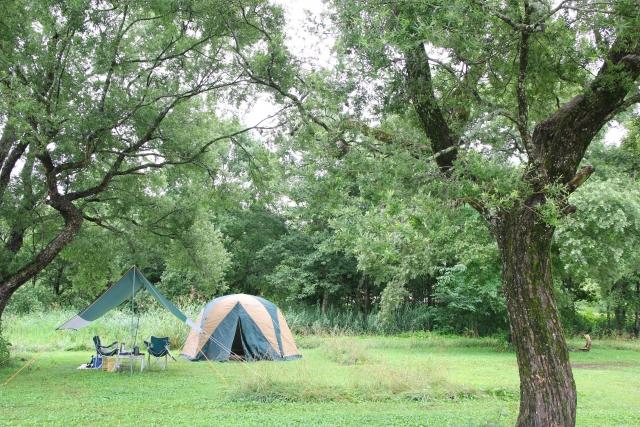 【関西】夏でも虫がいないキャンプ場12選!蚊、アブが少ない快適キャンプ♪【虫を呼ばない工夫も】